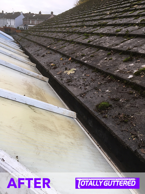 The cleared and cleaned gutter, ready to do what it was designed for